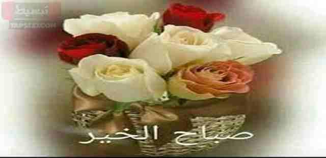 عبارات صباح الخير واجمل عبارات الصباح